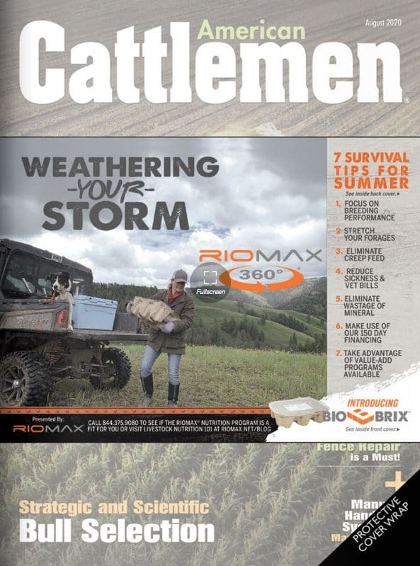 Riomax Sponsored American Cattleman Magazine August 2020 Edition.  7 Survival Tips For Summer Article